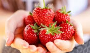 Luleshtrydhja, antioksidant i shkëlqyer dhe ...